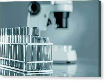 Blood Samples In Lab Canvas Print
