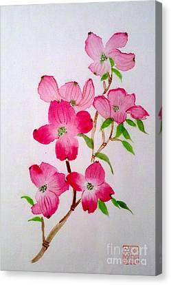 Blooming Dogwood Canvas Print