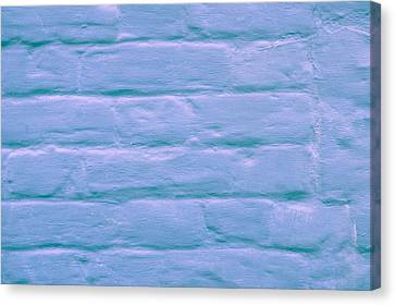 Blue Brick Wall Canvas Print by Tom Gowanlock