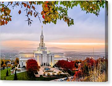 Bountiful Temple Leaves Canvas Print by La Rae  Roberts