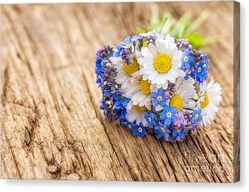 Bouquet With Daisies And Forget-me-not Canvas Print by Palatia Photo