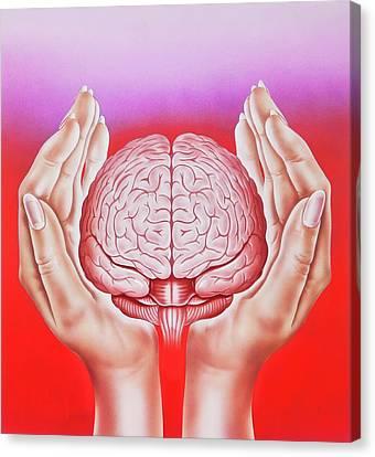 Psychiatric Canvas Print - Brain Protection by John Bavosi