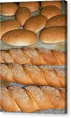 Bread (panini), Italian Cooking, Italy Canvas Print