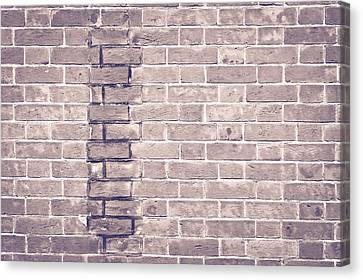 Brick Wall Repair Canvas Print by Tom Gowanlock