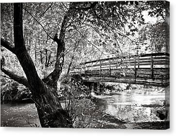 Bridge At Ellison Park Canvas Print by Sara Frank