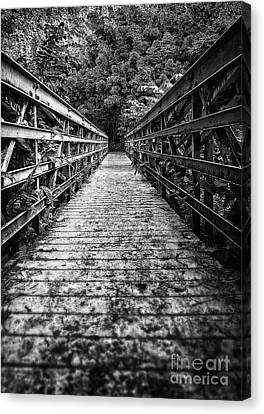 Bridge Leading Into The Bamboo Jungle Canvas Print by Edward Fielding