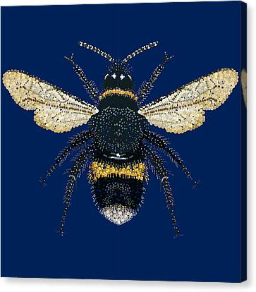 Bumblebee Bedazzled Canvas Print by R  Allen Swezey