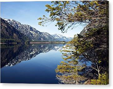 Buttle Lake Canvas Print