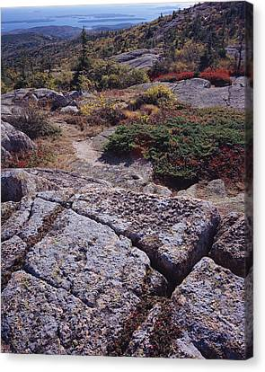 Cadillac Mountain Canvas Print