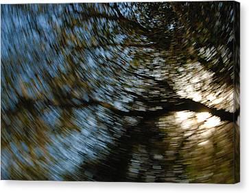 Camera Toss Canvas Print