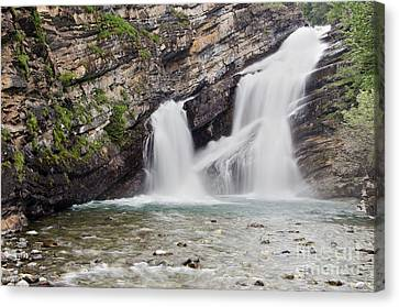 Cameron Falls Canvas Print by Dee Cresswell
