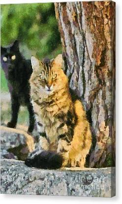 Cats In Hydra Island Canvas Print by George Atsametakis