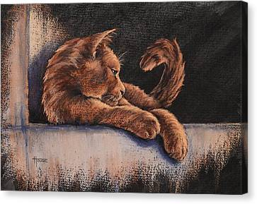 Canvas Print featuring the painting Catching The Last Rays by Cynthia House