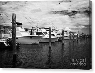 Charter Fishing Boats Charter Boat Row City Marina Key West Florida Usa Canvas Print by Joe Fox