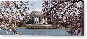 Cherry Blossom Trees In The Tidal Basin Canvas Print by Panoramic Images