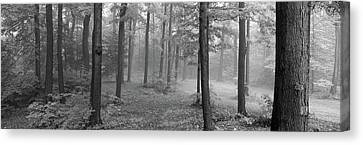 Chestnut Ridge Park, Orchard Park, New Canvas Print by Panoramic Images