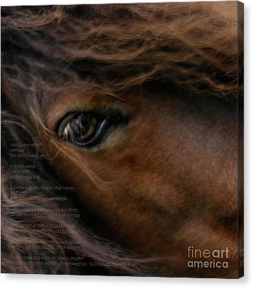 Child Of The Sun Canvas Print by Sharon Mau