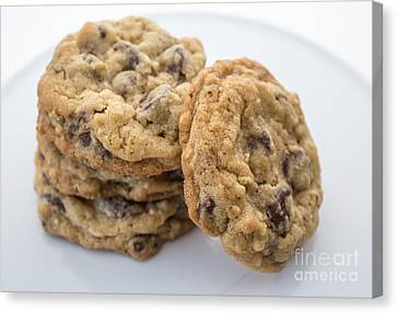 Chocolate Chip Cookies Canvas Print by Edward Fielding