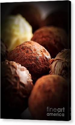 Chocolate Truffles Canvas Print by Elena Elisseeva