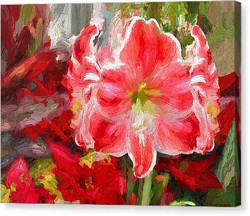 Christmas Lilies Canvas Print