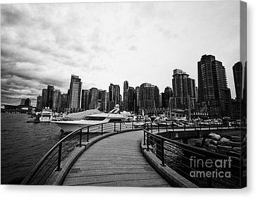 coal harbour marina and high rise apartment condo blocks in the west end Vancouver BC Canada Canvas Print by Joe Fox