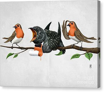 Cock Robin Wordless Canvas Print by Rob Snow