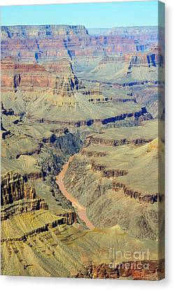 Colorado River Flowing Red Through Inner Gorge Grand Canyon National Park Canvas Print by Shawn O'Brien
