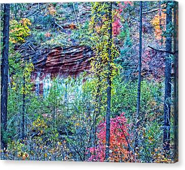 Colorful Wall Canvas Print