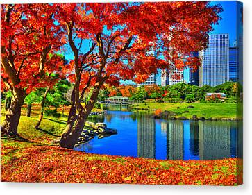 Colors Of Fall Canvas Print by Midori Chan