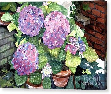 Corner Garden Canvas Print