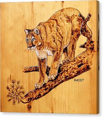 Canvas Print featuring the pyrography Cougar by Ron Haist
