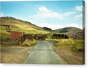 Country Track Canvas Print by Tom Gowanlock