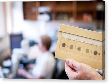 Cytology Laboratory Canvas Print by Aberration Films Ltd