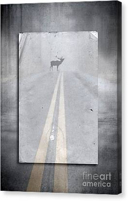 Moose Canvas Print - Danger Ahead by Edward Fielding