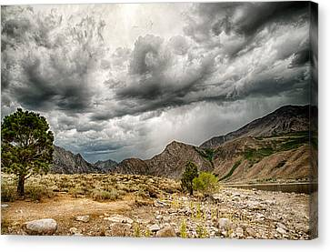 Dark Skies At Grant Lake Canvas Print by Cat Connor