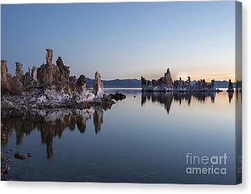 Dawn On Mono Lake Canvas Print by Sandra Bronstein