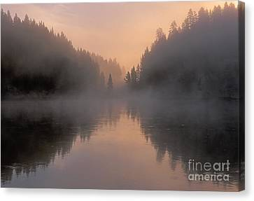 Dawn On The Yellowstone River Canvas Print by Sandra Bronstein