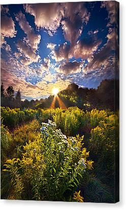 Daybreak Canvas Print by Phil Koch