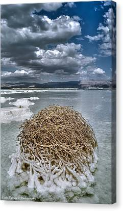 Dead Sea Monuments Of Nature  Canvas Print by Isaac Silman