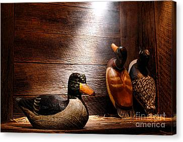 Decoys In Old Hunting Cabin Canvas Print by Olivier Le Queinec