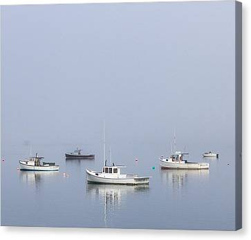 Down East Maine Canvas Print by Trace Kittrell