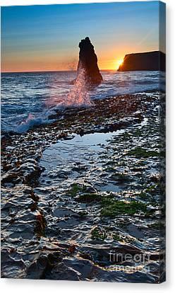 Dramatic View Of A Sea Stack In Davenport Beach Santa Cruz. Canvas Print