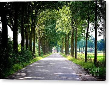Dutch Road Canvas Print by Carol Groenen