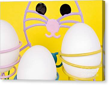 Canvas Print featuring the photograph Easter Bunny And Eggs by Vizual Studio
