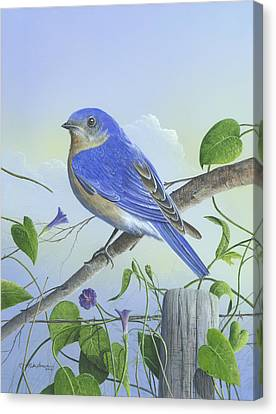 Canvas Print featuring the painting Eastern Bluebird by Mike Brown