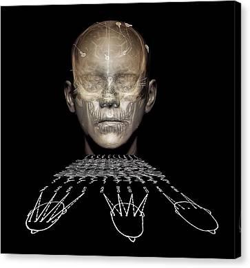 Psychiatric Canvas Print - Electroencephalography by Zephyr
