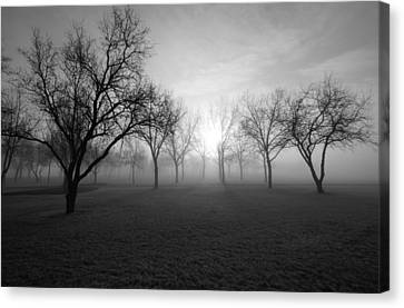 Endless Canvas Print by Leanna Lomanski