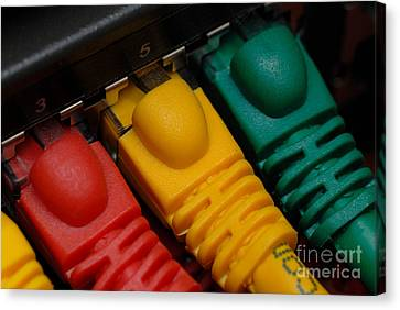 Ethernet Cables Plugged Into Router Canvas Print by Amy Cicconi