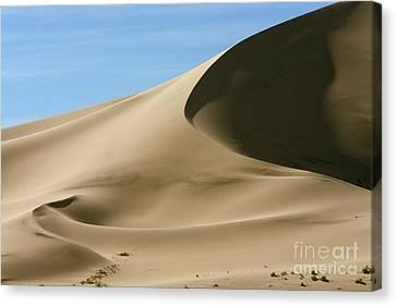 Eureka Dunes Death Valley Natl Park Canvas Print by Yva Momatiuk John Eastcott