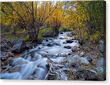 River Canvas Print - Fall At Big Pine Creek by Cat Connor